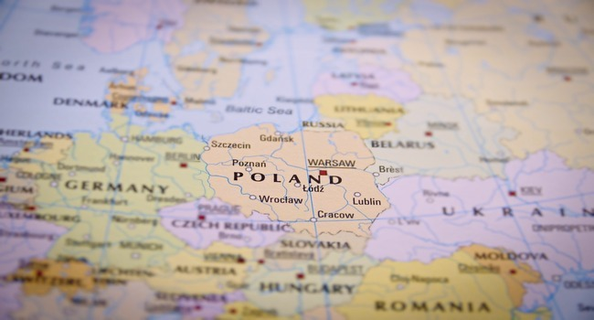 see case - Polish Immigrant Services